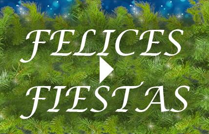 Feliz Navidad y Próspero Año Nuevo 2016 de parte de Visual-Home